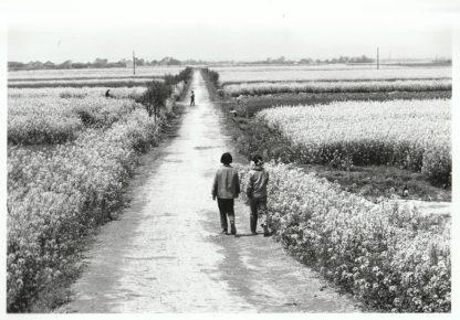 Tirage 08 - Xin Chan - Mai 1982 - Jean-Benoît Zimmerman - La Nouvelle Chambre Claire